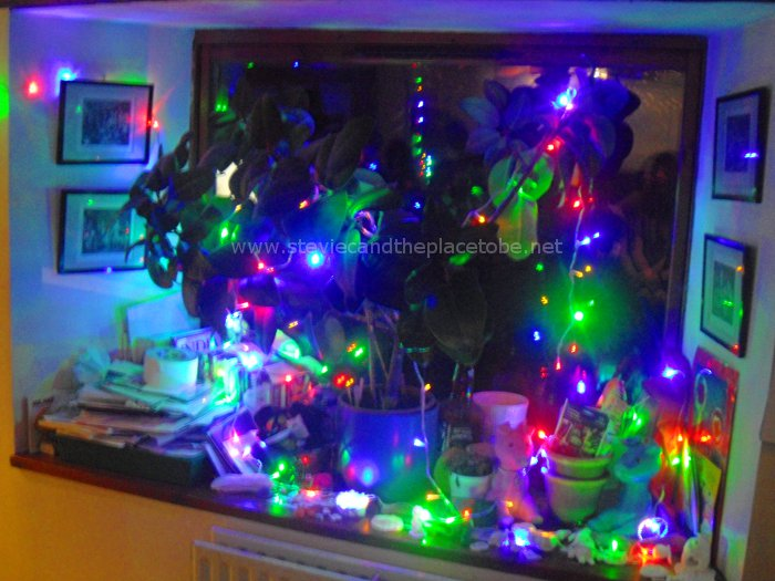 LED fairy lights at a DD8 Party in Kirriemuir