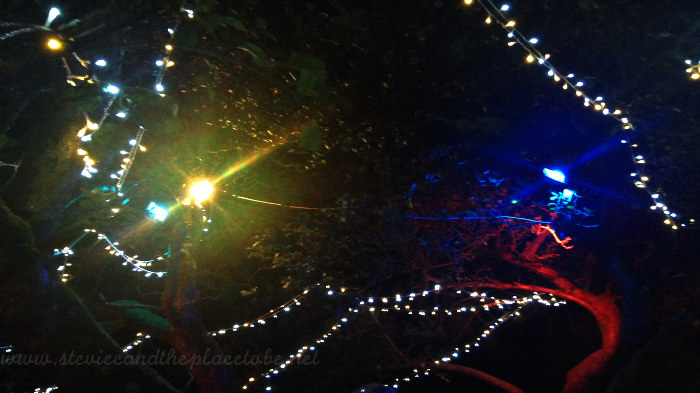 Apple tree with LED fairy light strings and led floodlights at Barry Mill in Carnoustie