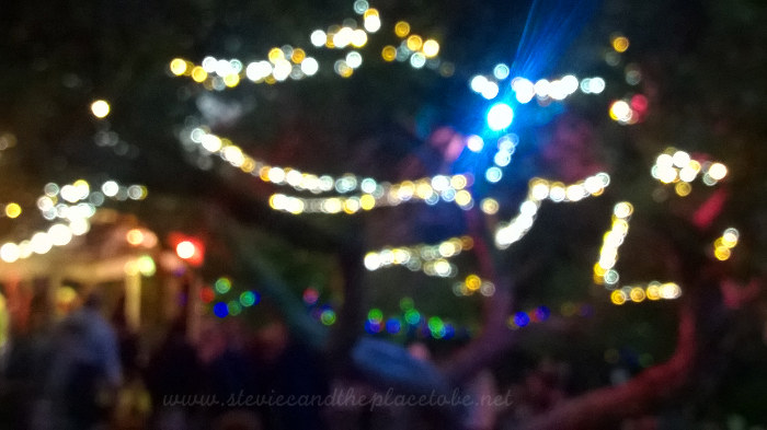 Soft focus LED fairy light strings in the tree along with led floodlight at Barry Mill in Carnoustie