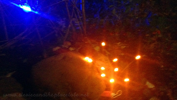 Halloween Party outdoor lighting: custom prototype Orange LED stem/strand lights powered from USB battery bank