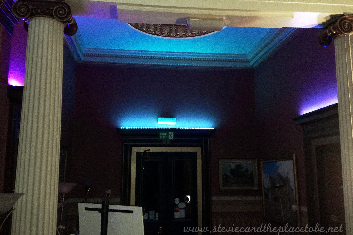 The Vine Dundee - Gin Tasting and event function suite. lighting installed by Stevie C
