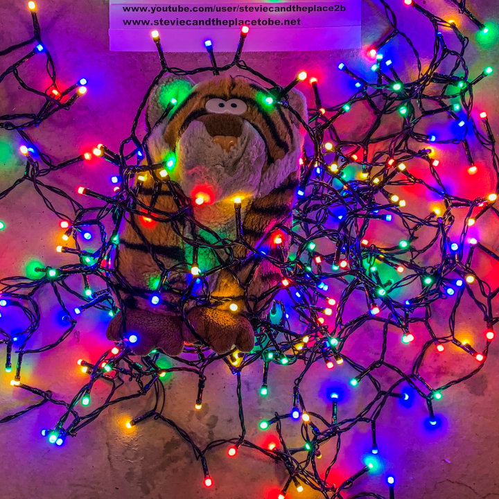 Cuddly Pet Tiger helping with Xmas Lights